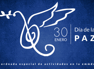 paz-web